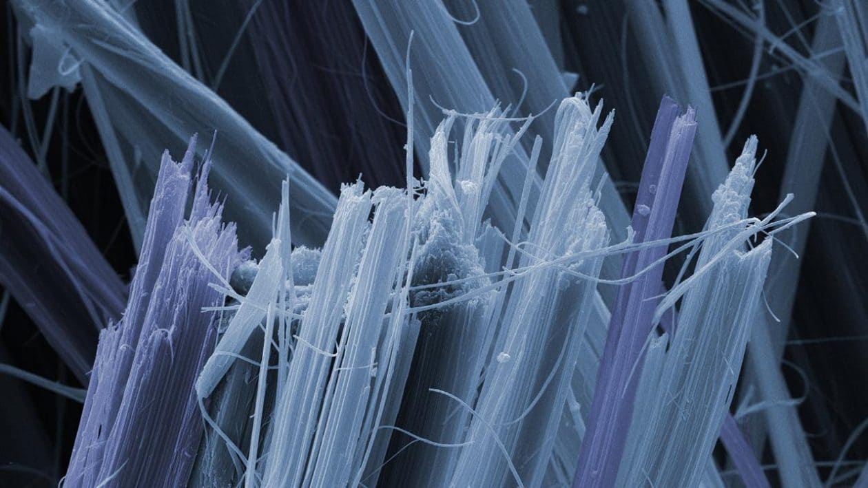 Asbestos is a known carcinogen